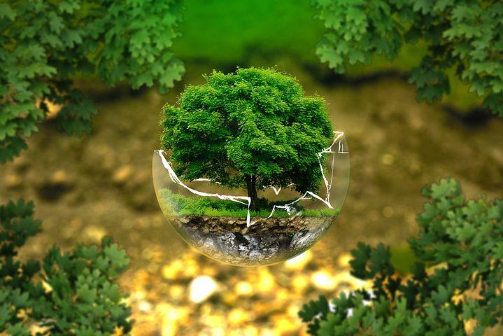 Védje a boltgót a zöld energiával!